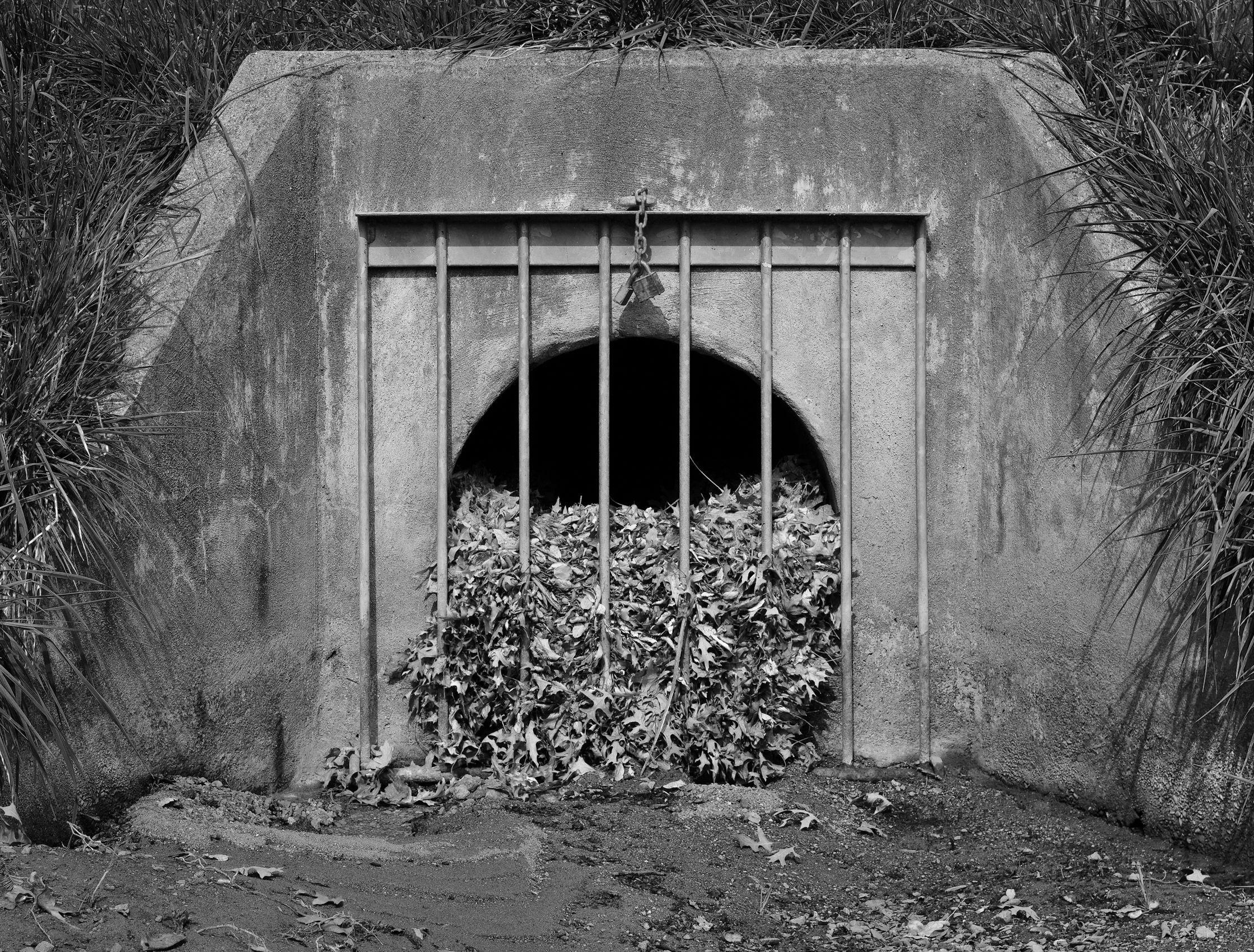 Leaf Prison