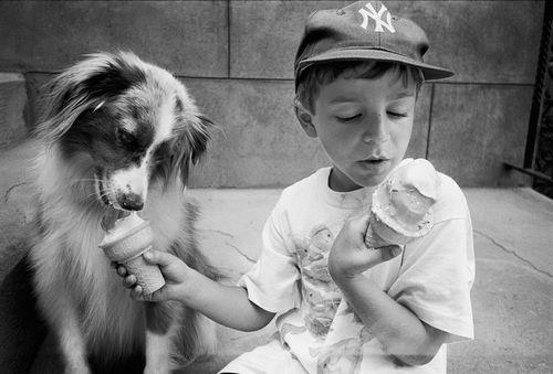 Lulu and David New York City