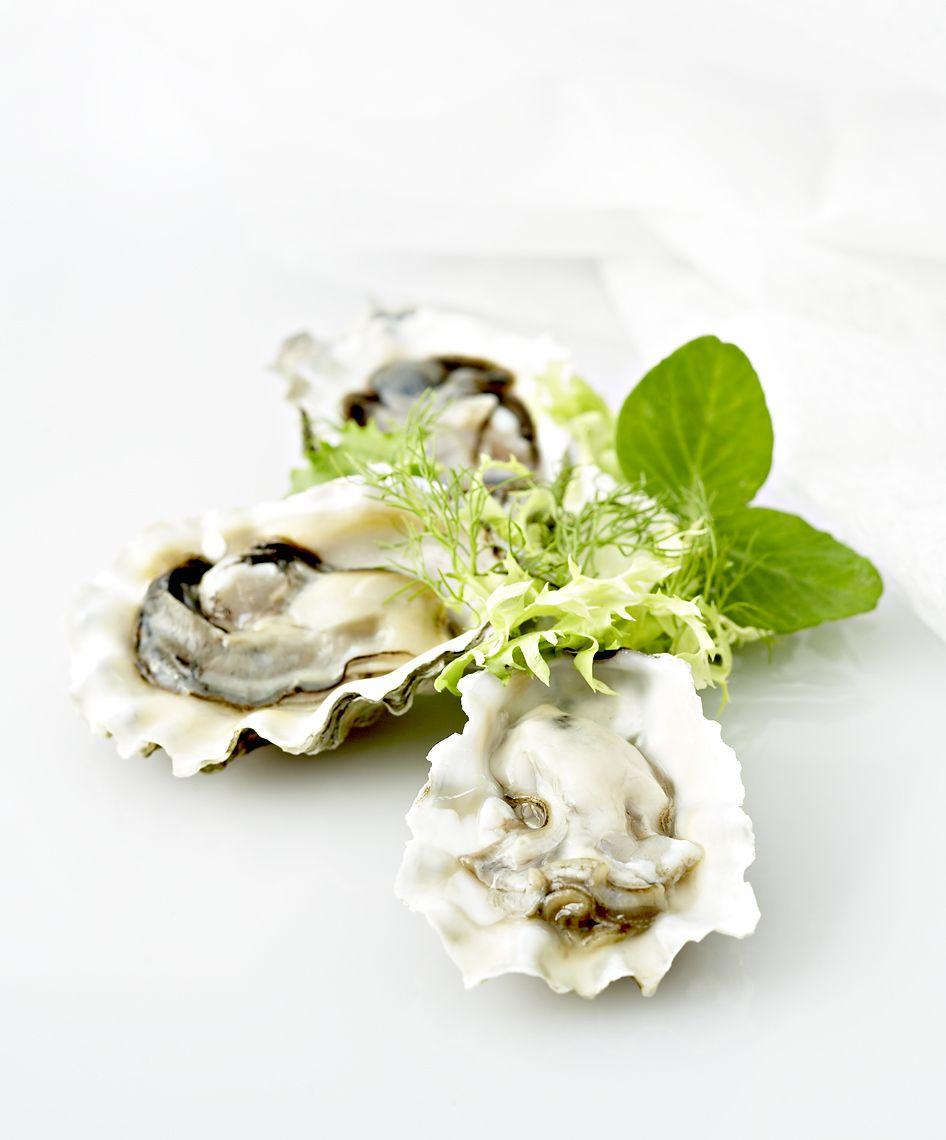 raw_oysters.jpg