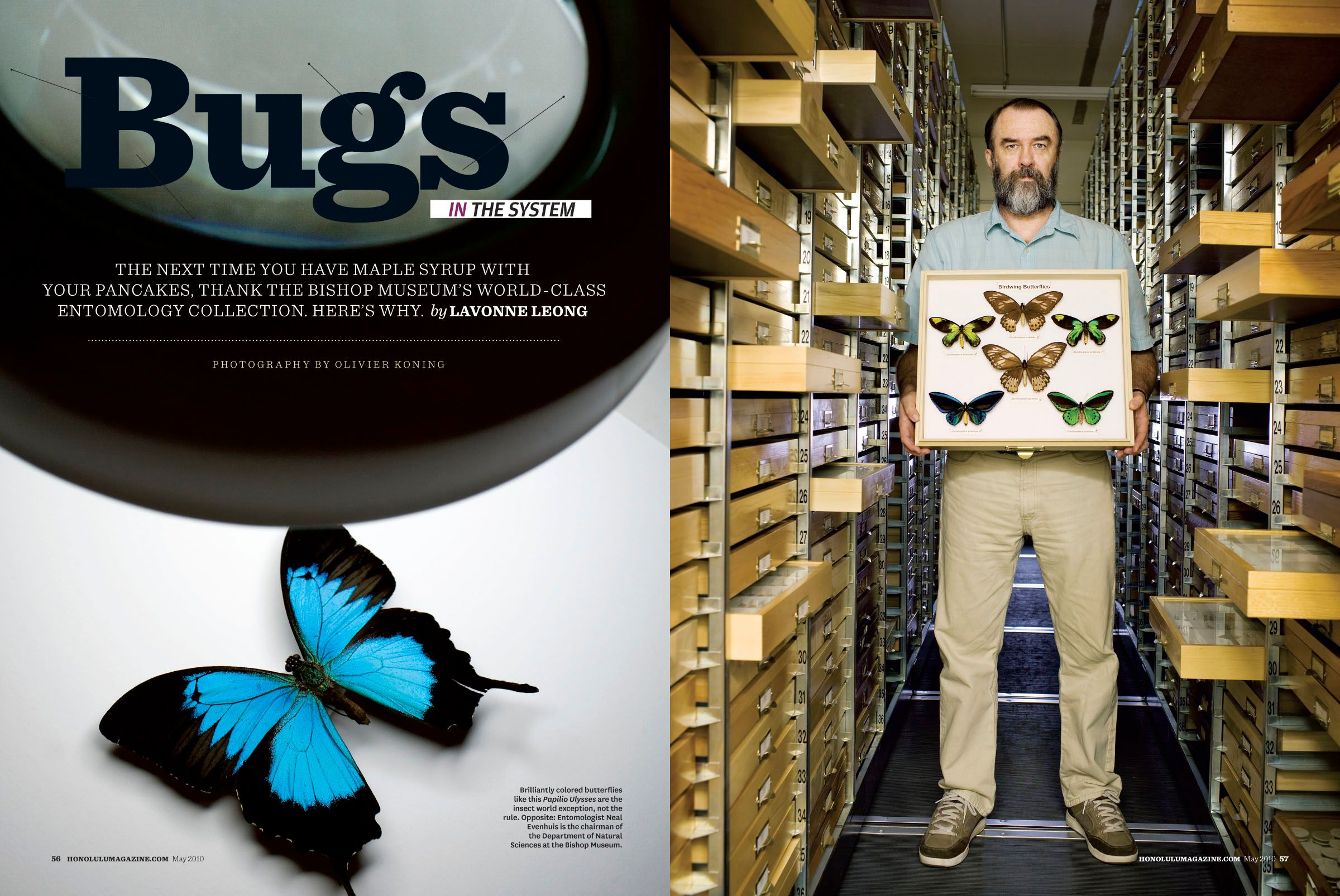 05-10_HM_Bugs-1.jpg