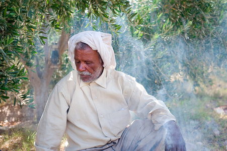 Bedouin takes a tea break in his olive grove in the Wadi Araba, Jordan.