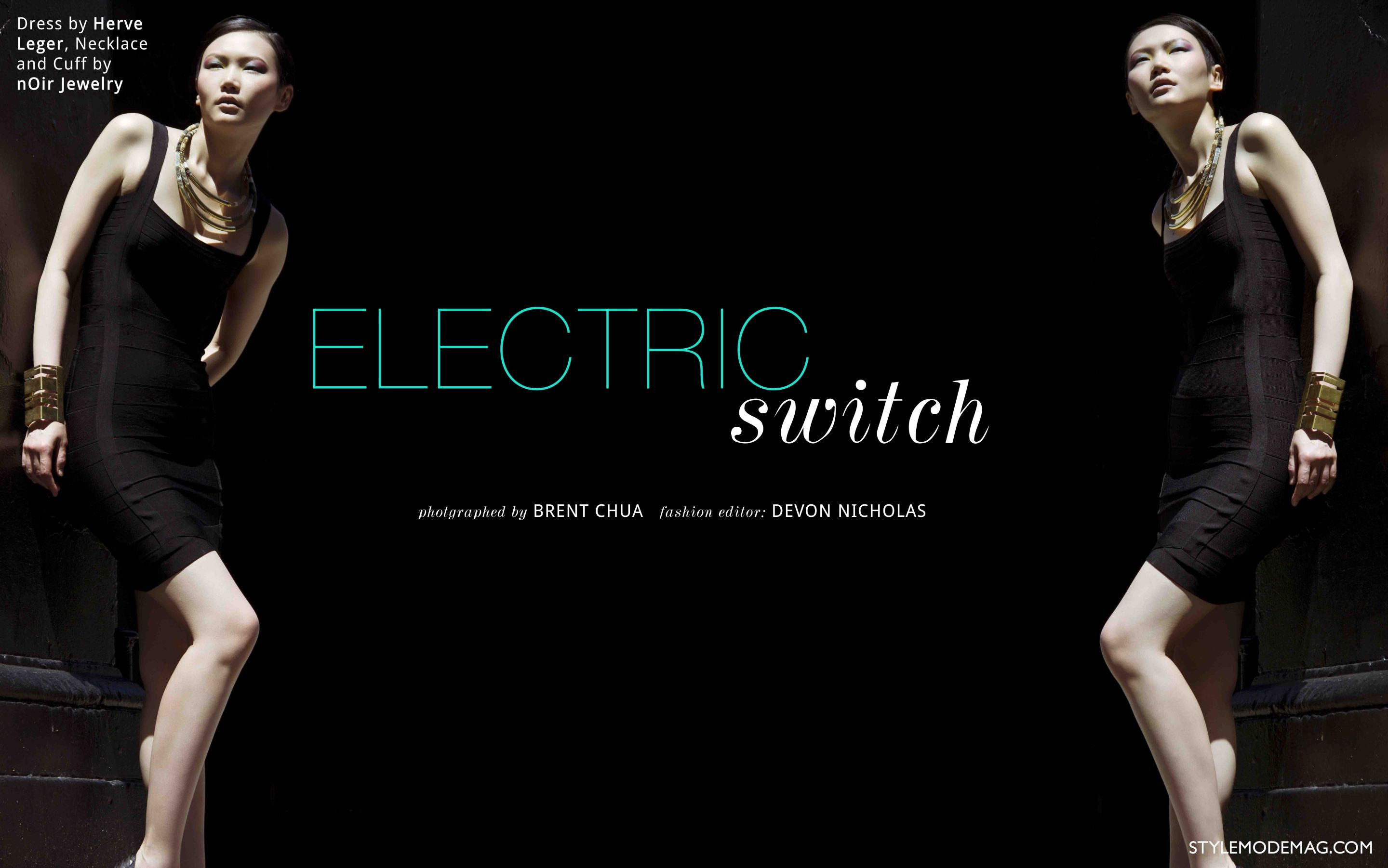 1electric_switch_1