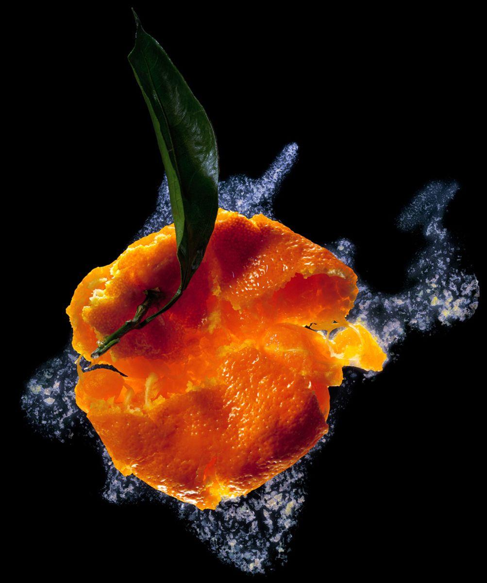 1r3smashed_orange.jpg
