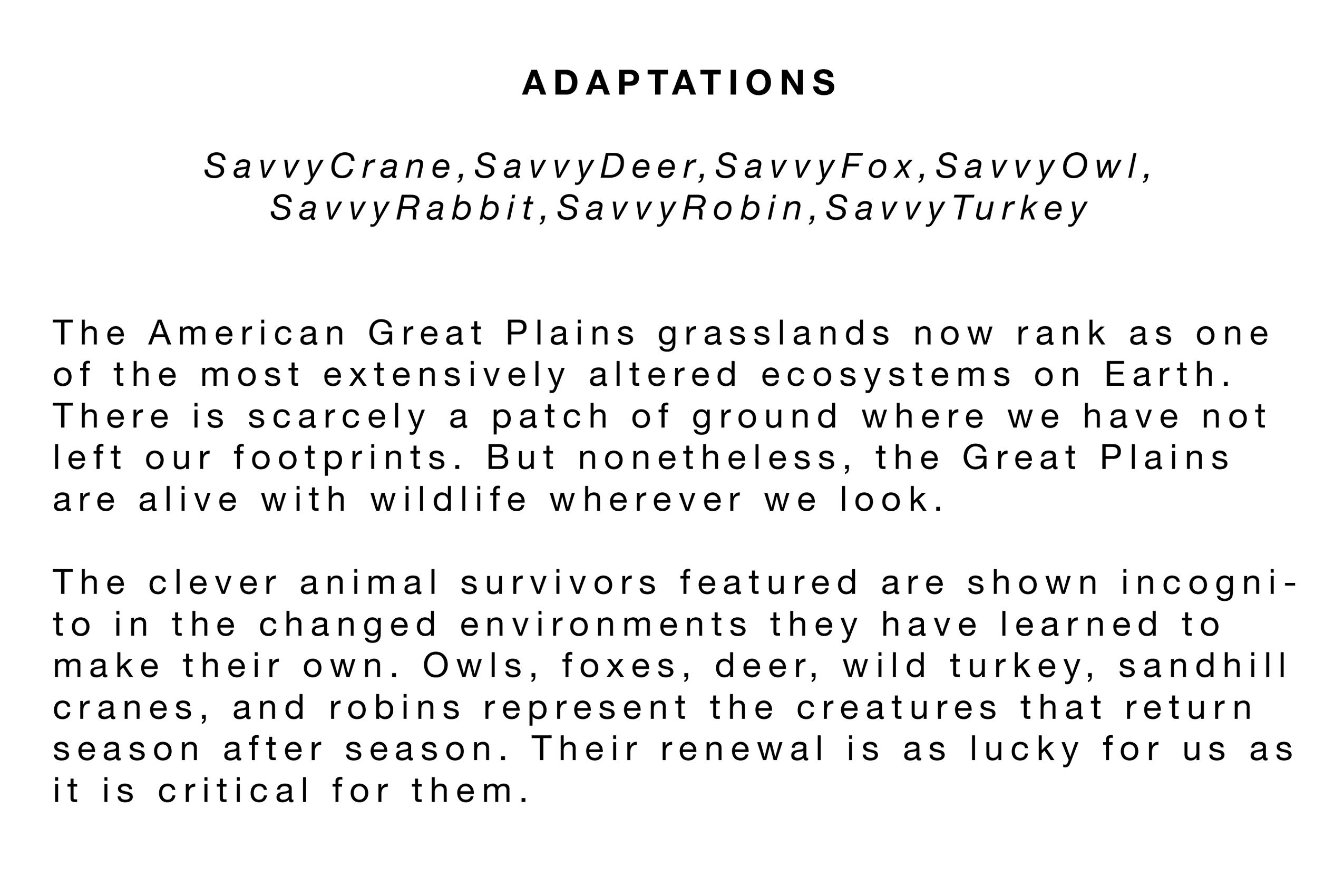 Adaptations Statement