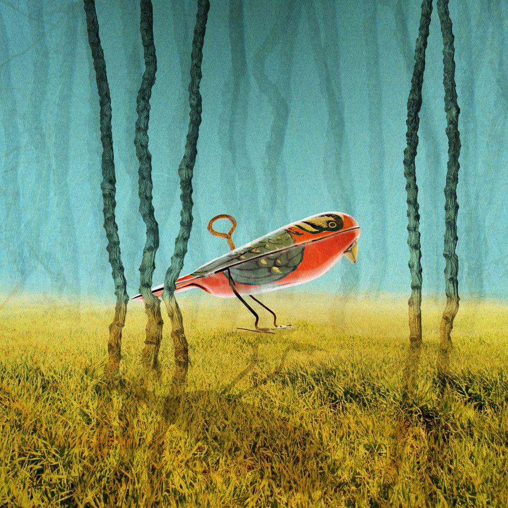WindupBird, 2011