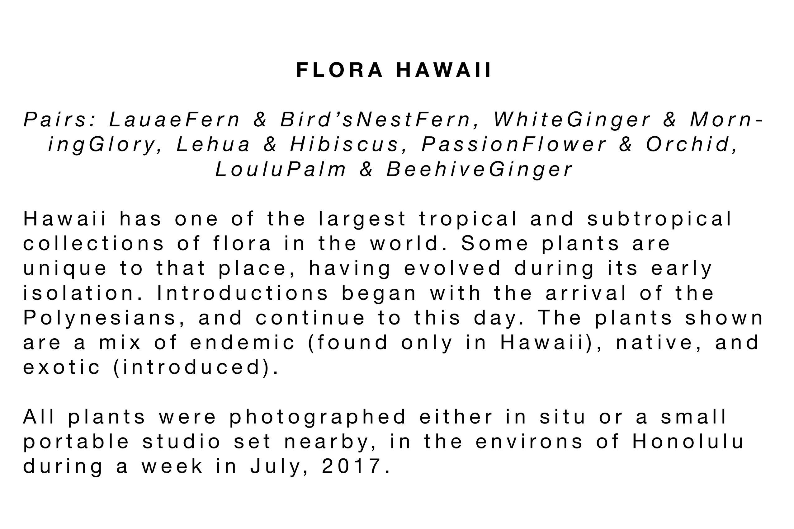 Flora Hawaii Statement