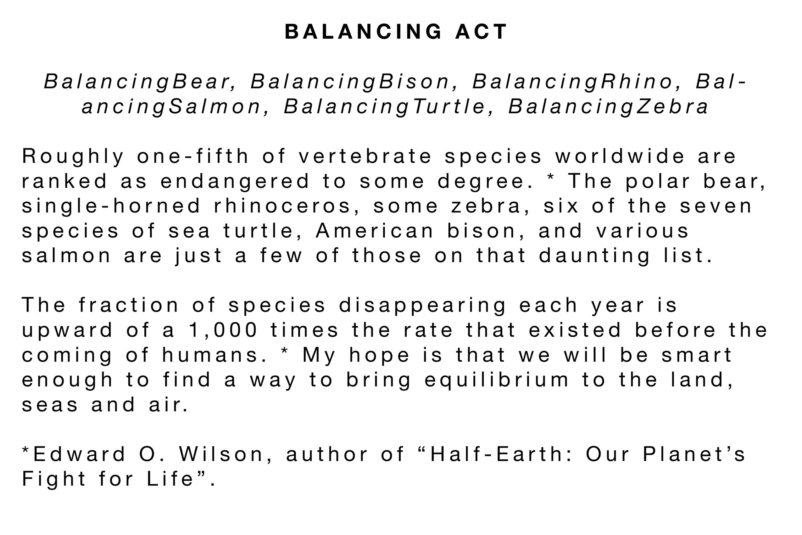 BalancingAct Statement