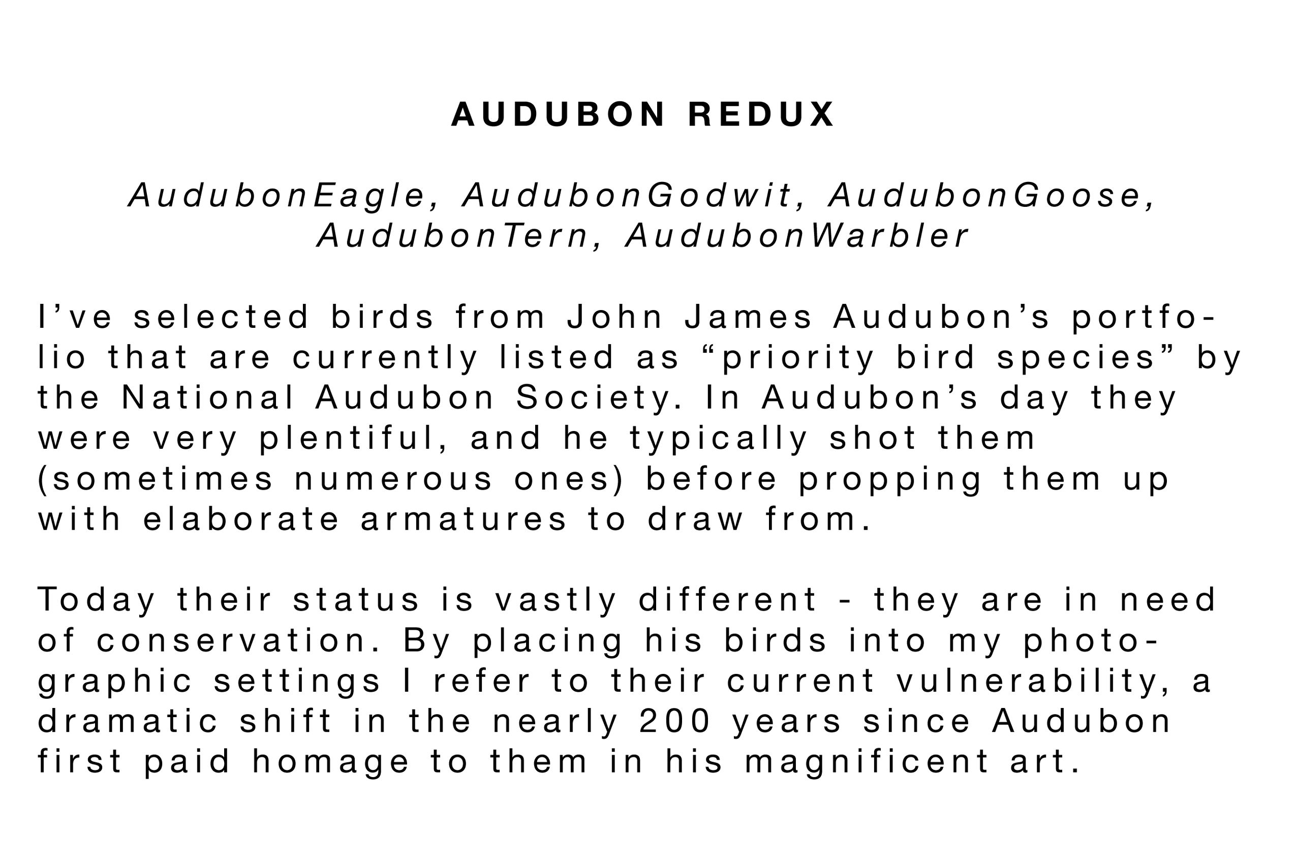 Audubon Statement