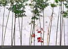 Bamboo_Wall-2.jpg