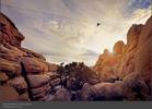 Desert&Denim-2.jpg