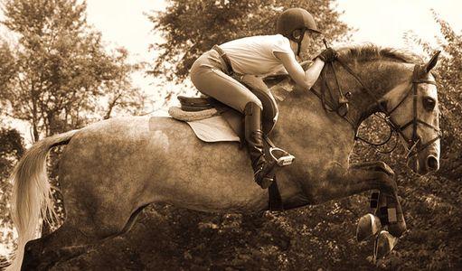 1Equestrian_45_Sepia