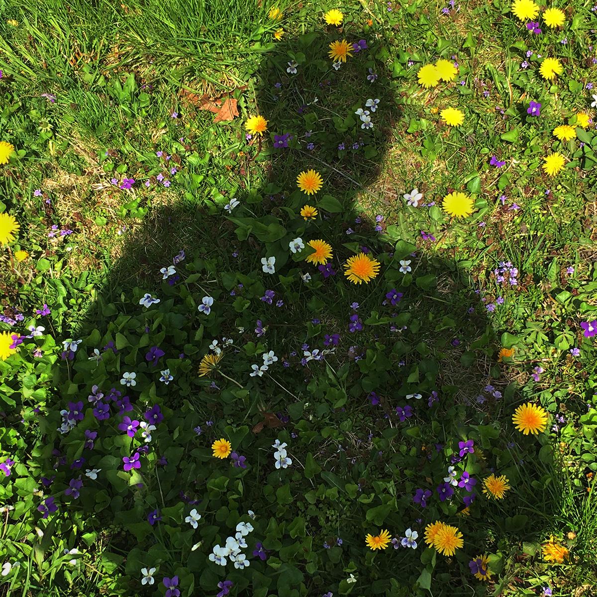 ShadowMen_16 copy.jpg