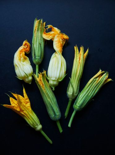Squash Blossoms A130709 Root to Leaf Stephen Satterfield Cookbook 2013