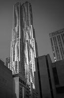 8  Spruce-NYC