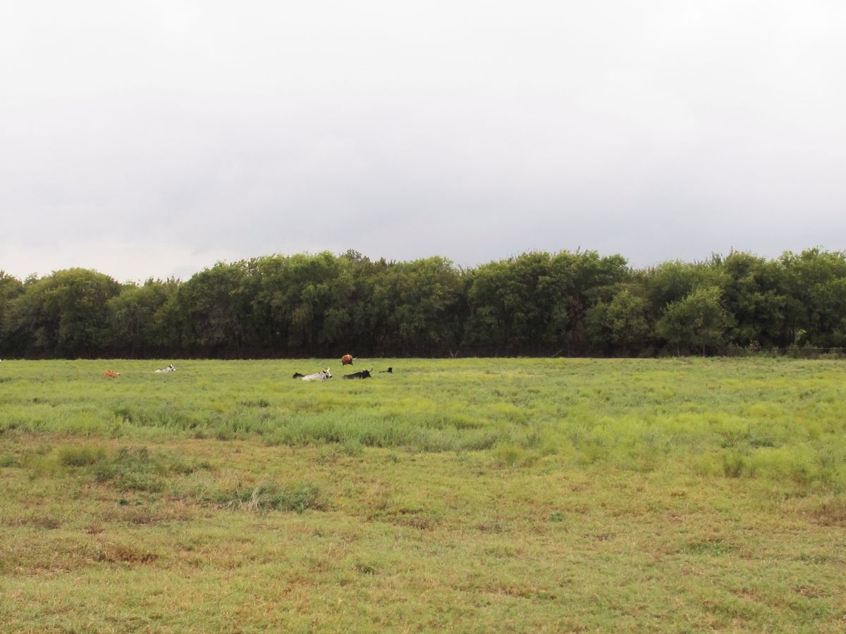 Jackie's Farm Photo Shoot Location 32.jpg