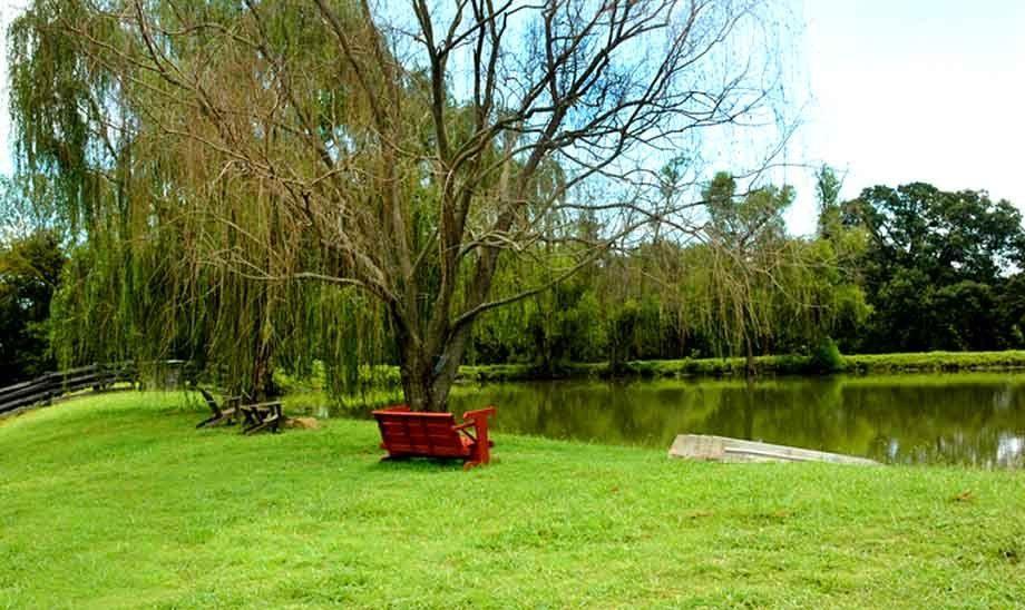 1r24_lake_singletree.jpg