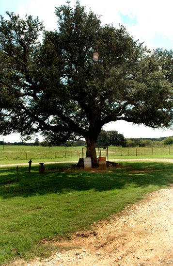 105_exterior_ranch_north_rio_vista_00.jpg