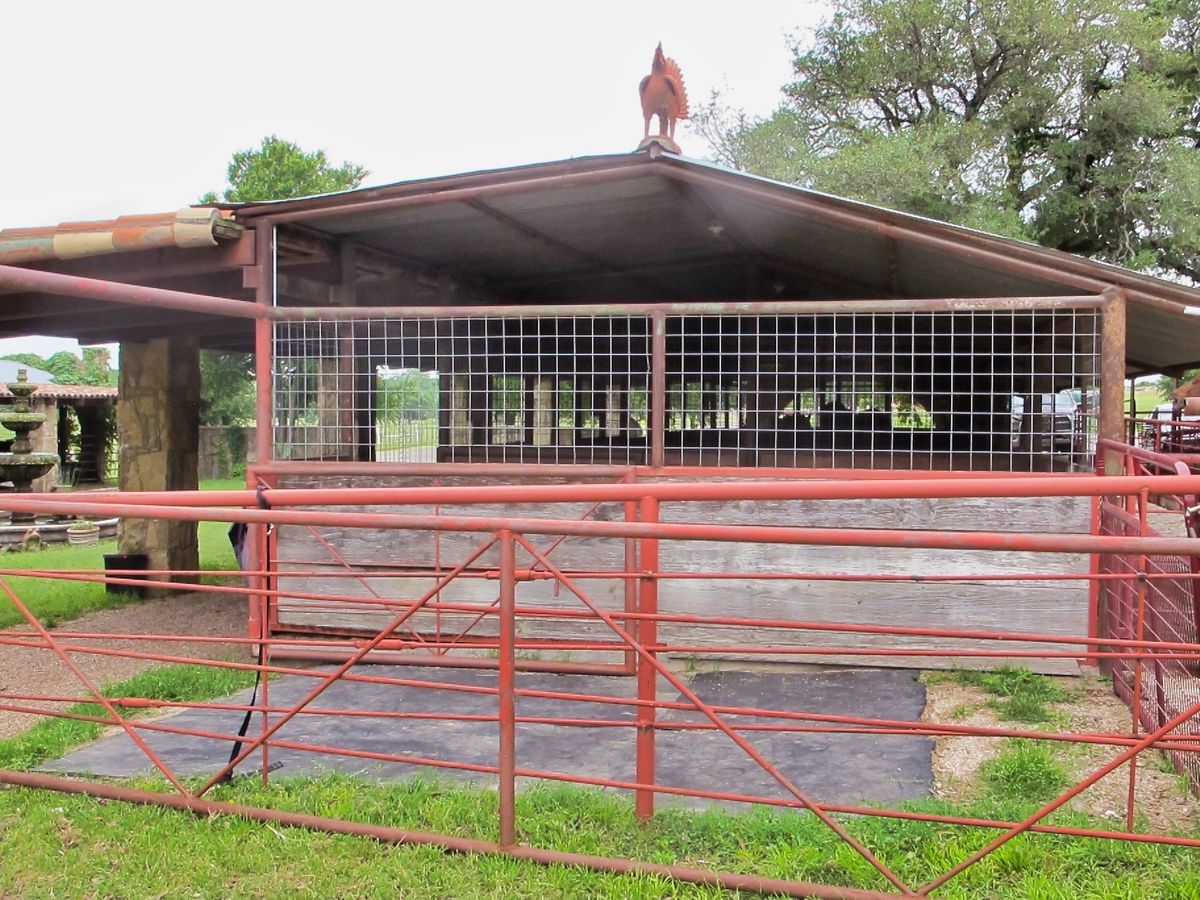 Liz Ranch Farms Ranches Photo Video Shoot Location Dallas 67.jpg