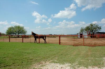 1r15_animals_ranch_north_rio_vista_00.jpg