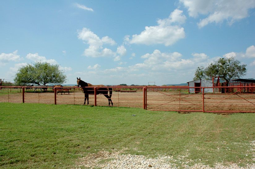 1r15_animals_ranch_north_rio_vista_00.jpg
