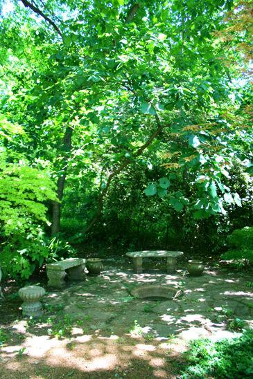 Field Contemporary Modern  Photo Video Location
