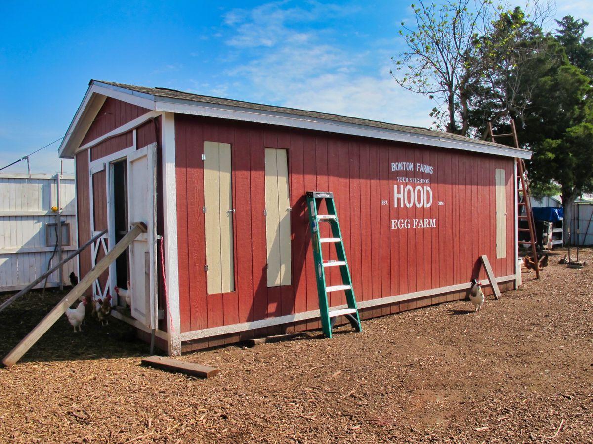 Bonton Farms Photo Video Shoot Location Dallas 18.jpeg