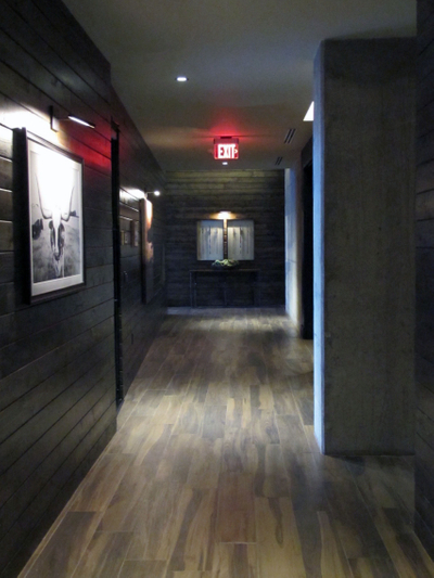 Ascent Lofts Highrises Photo Video Shoot Location Dallas 31.jpg