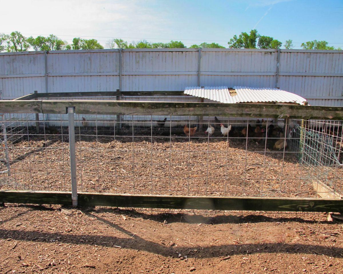 Bonton Farms Photo Video Shoot Location Dallas 20.jpeg