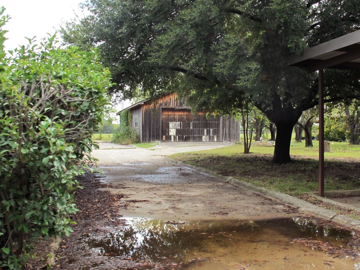 Jackie's Farm Photo Shoot Location 54.jpg