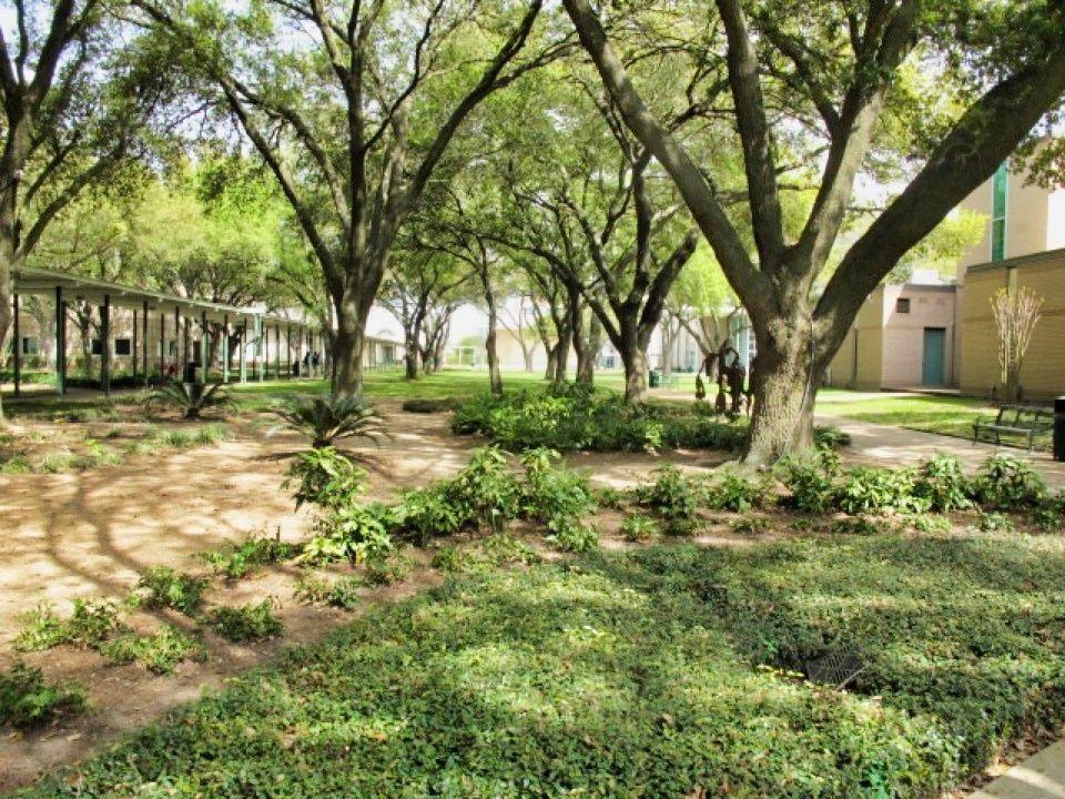 Starke Jesuit Schools Photo Video Shoot Location Houston