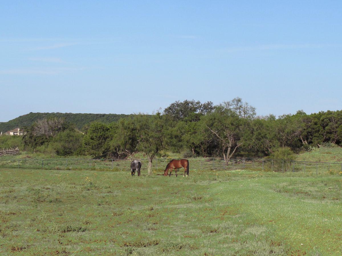 Ranch PK Lake Photo Shoot Location42.jpg