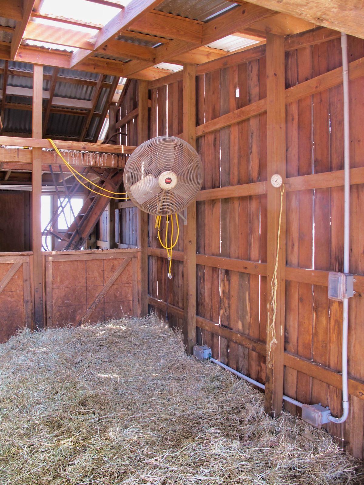 Bonton Farms Photo Video Shoot Location Dallas 21.jpeg