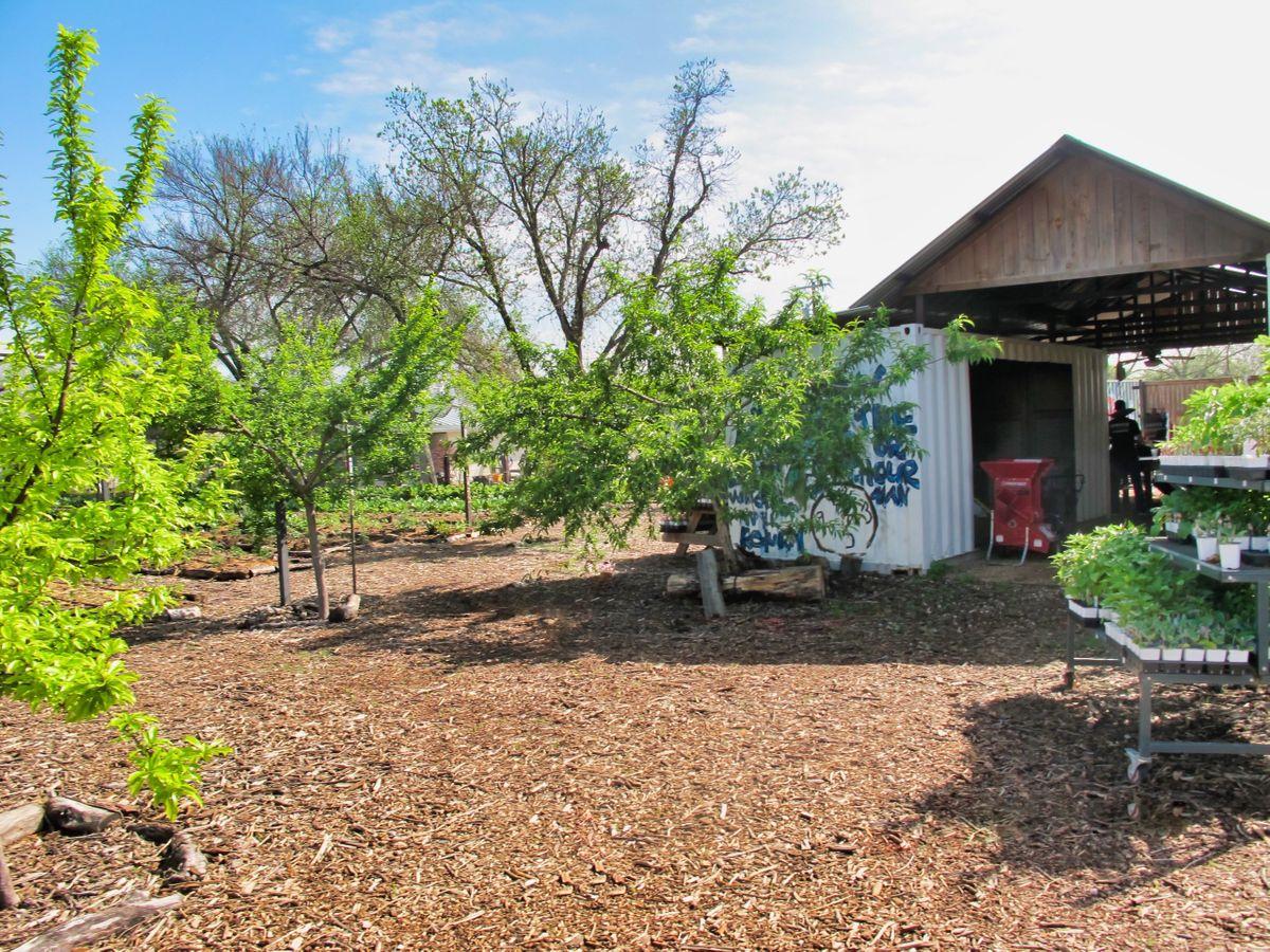 Bonton Farms Photo Video Shoot Location Dallas 16.jpeg