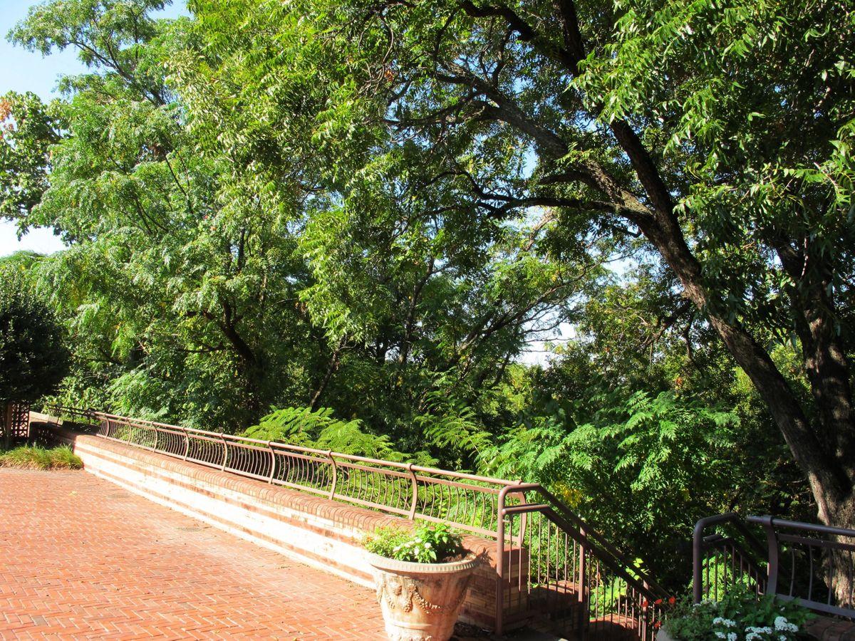 McFarland Historical Home Photo Video Shoot Location Dallas 04.jpg