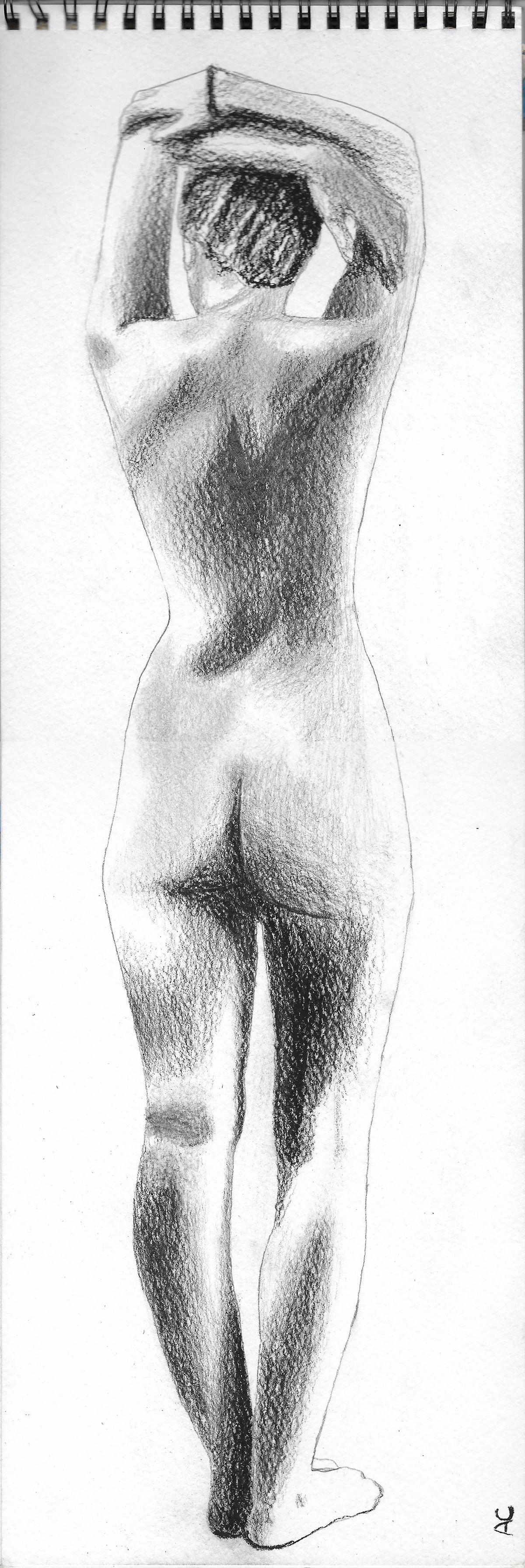 Figure Study Vignette