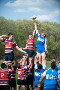 Rugby 25.jpg