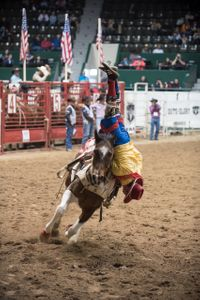 Rodeo 14.jpg