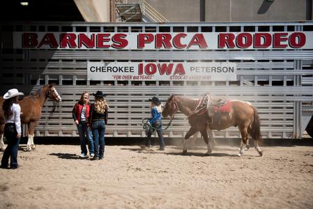 Rodeo 09.jpg