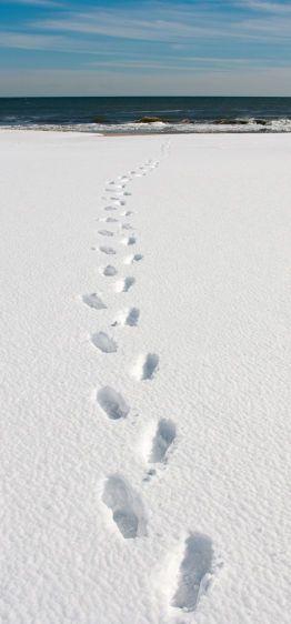 5_0_1066_1t14x30_Footprints_200dpi.jpg