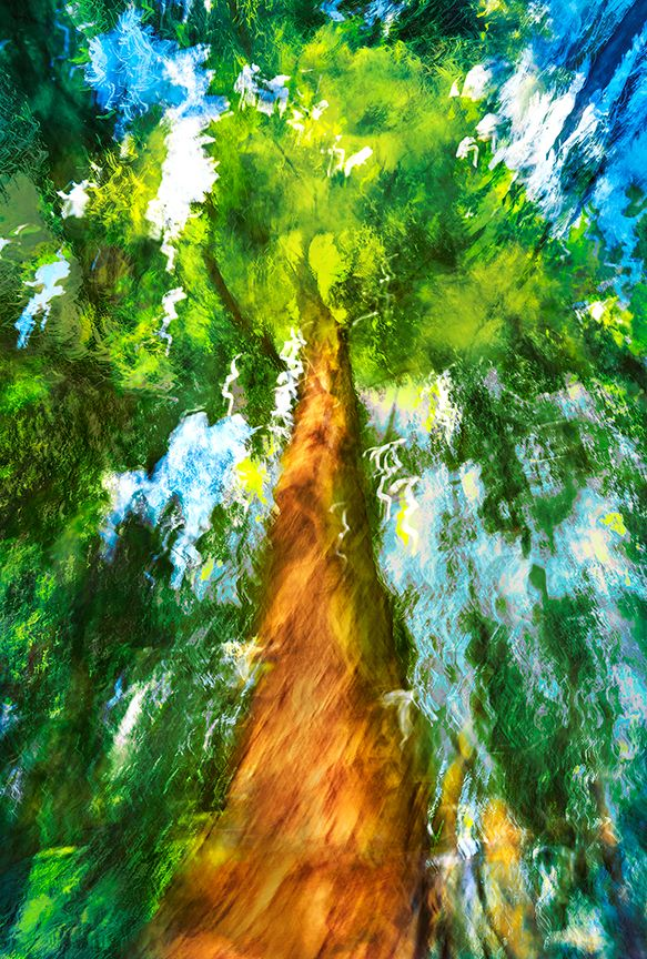 Sure-and-Towering-27X40.jpg