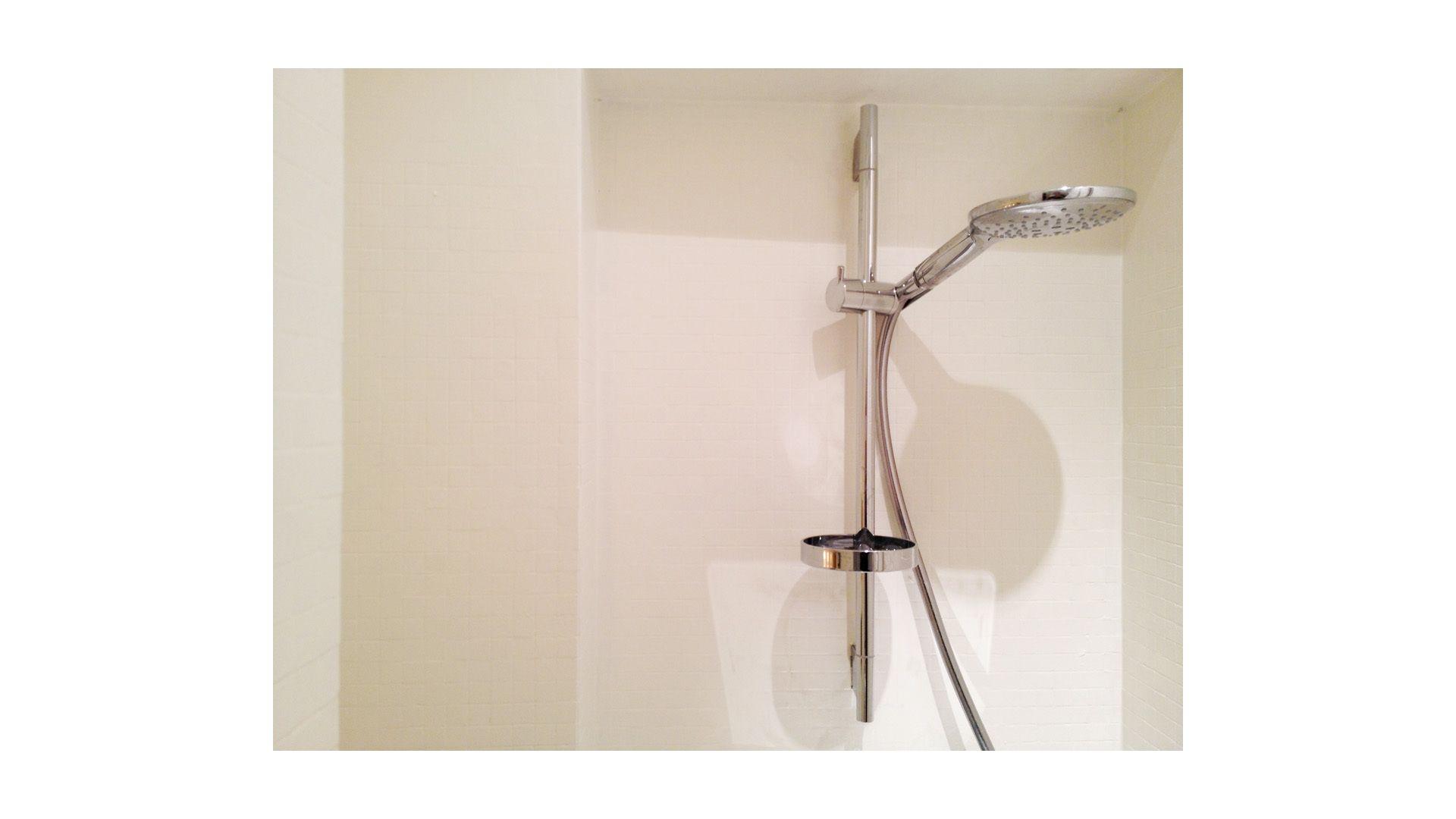 1paris_showerheadx.jpg
