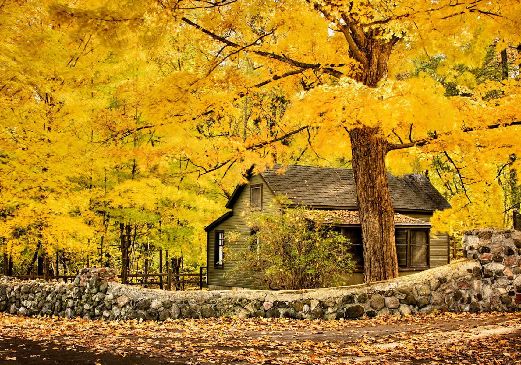 10510_fall_amy_belle_lake_rd.jpg