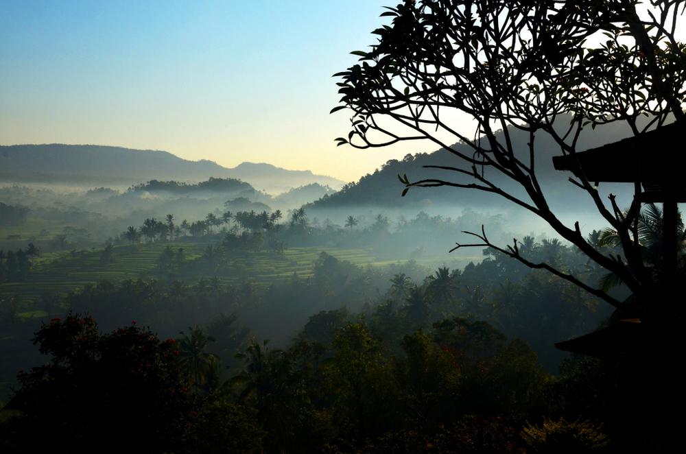 Bali morning