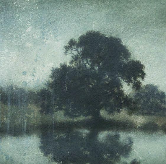 southern live oak by the pond
