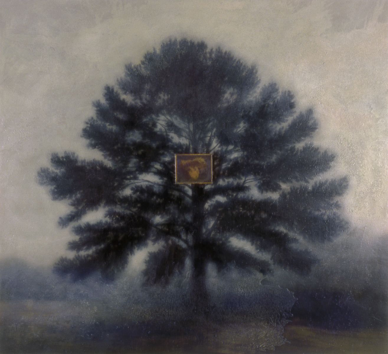 Castanea on Pinus Taeda