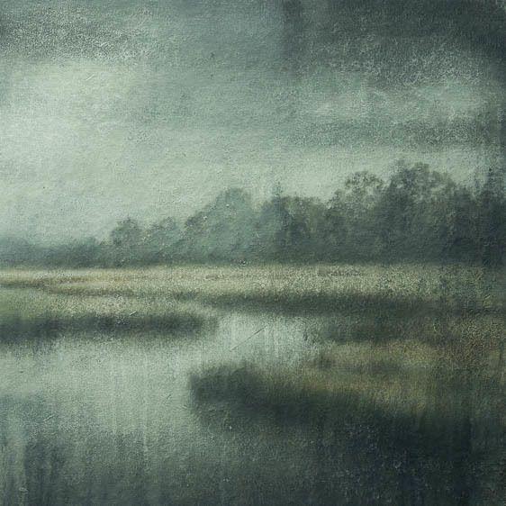 cumberland island marsh