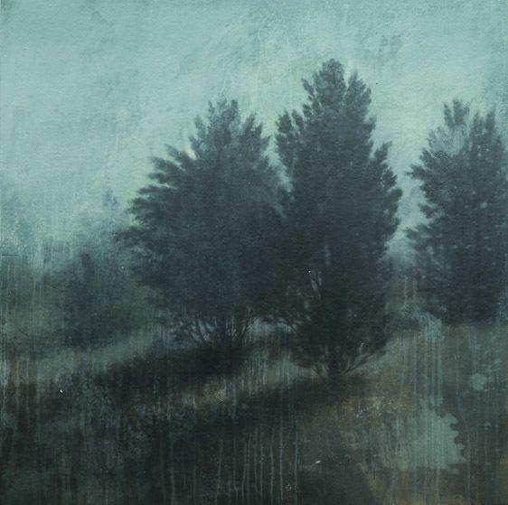 blue ridge cedars