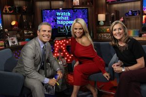 Andy Cohen, Pam Anderson, Meredith Vieira