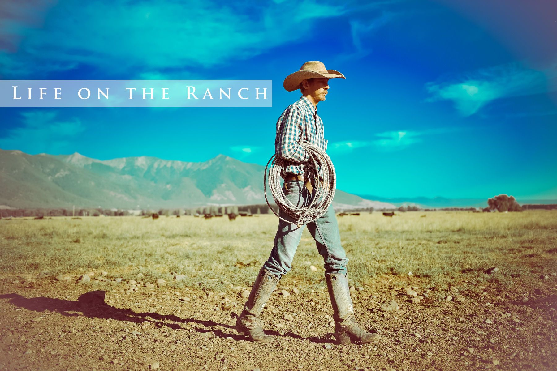 11-ranch_header.jpg