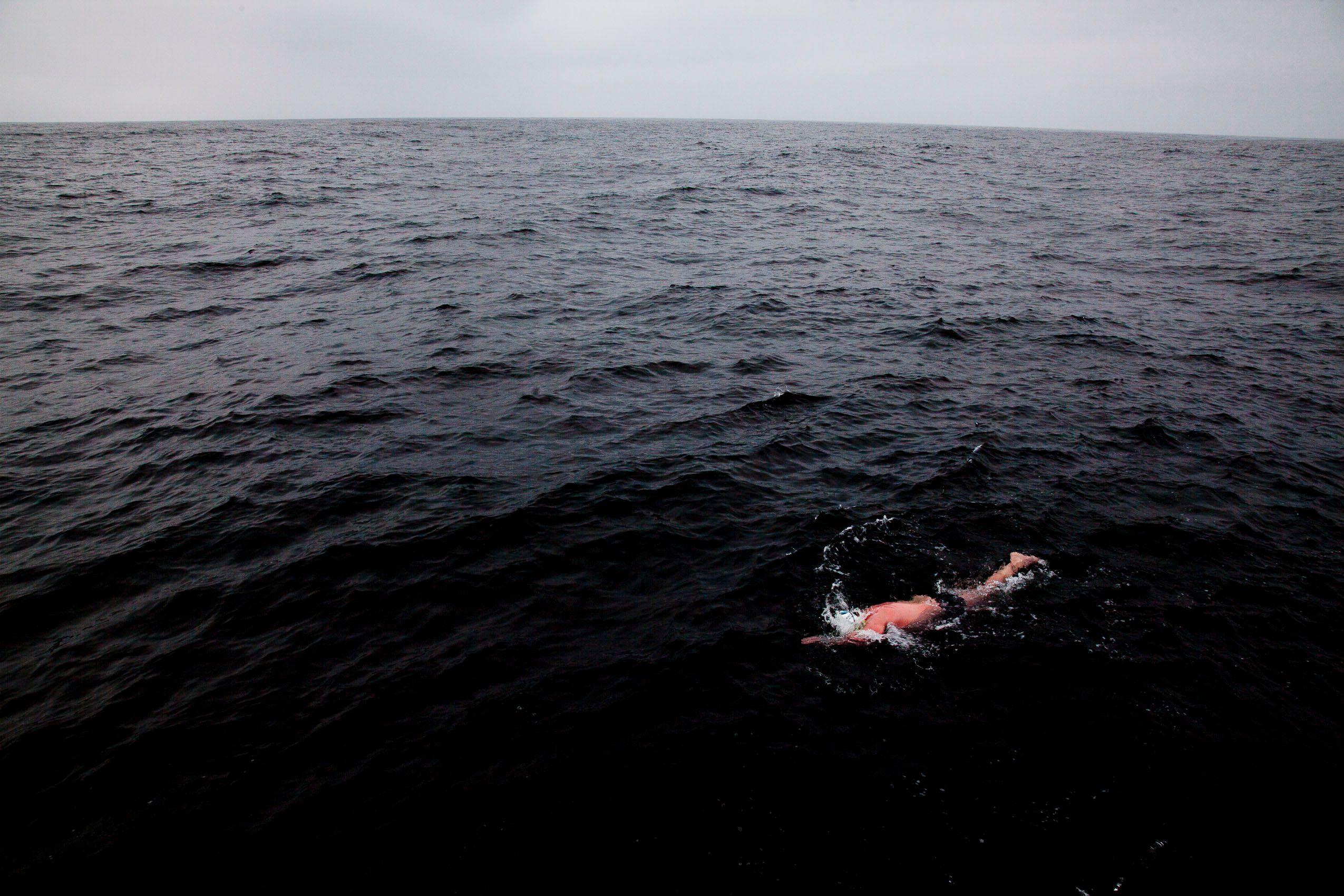 san_fransisco_farallon_swim.jpg